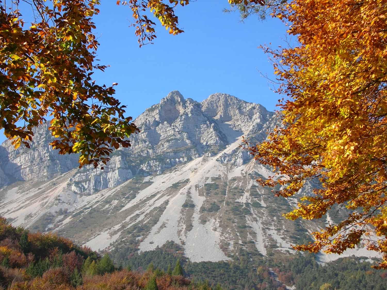 Monte Stivo Val di Gresta