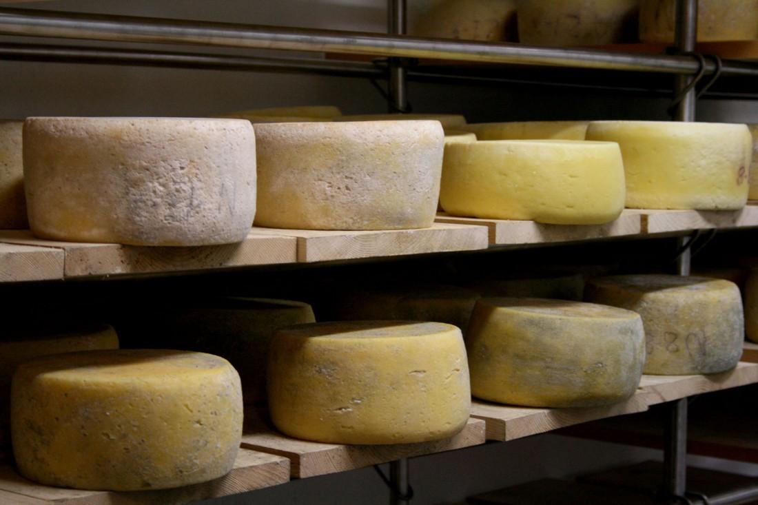 prodotti-tipici-vallagarina-formaggi