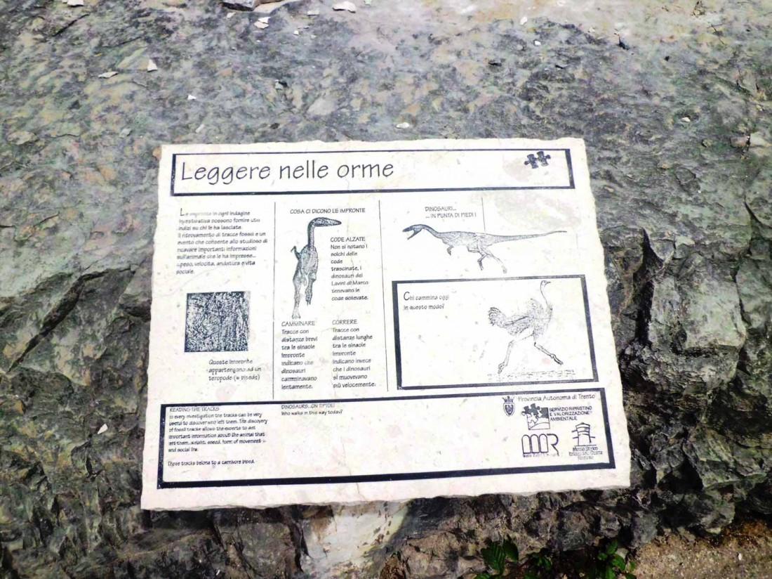 Orme-dei-dinosauri-2-VB-visitrovereto