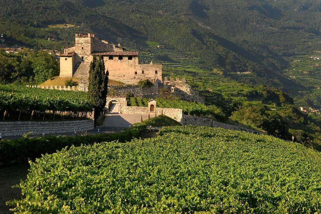 Castel Noarna - cantina vinicola