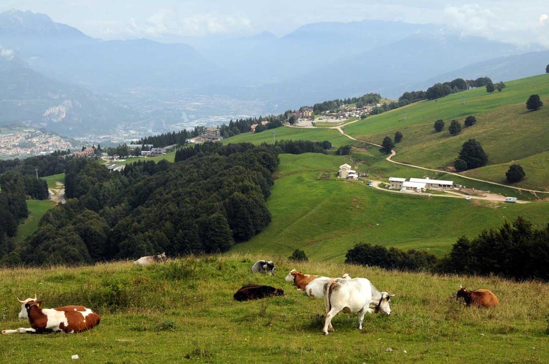 Parco-del-Monte-Baldo-estate