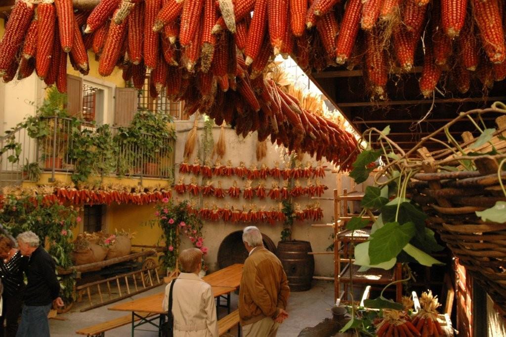 Ganzega-autunno-visitrovereto (2)