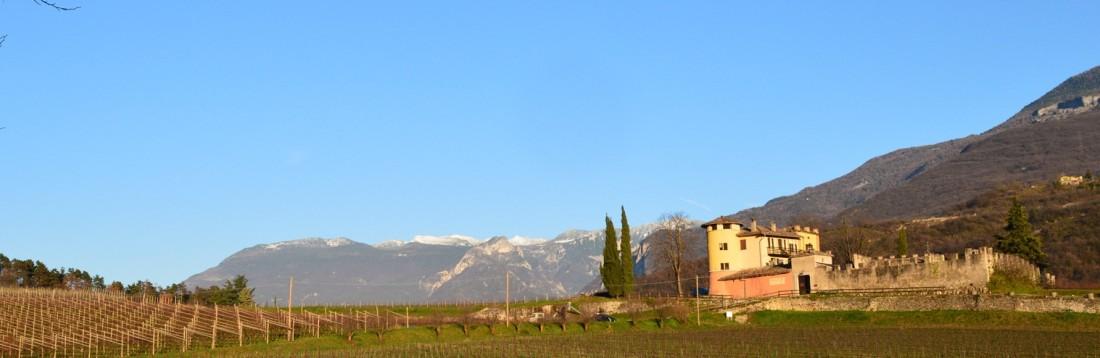 Azienda-Agricola-Balter