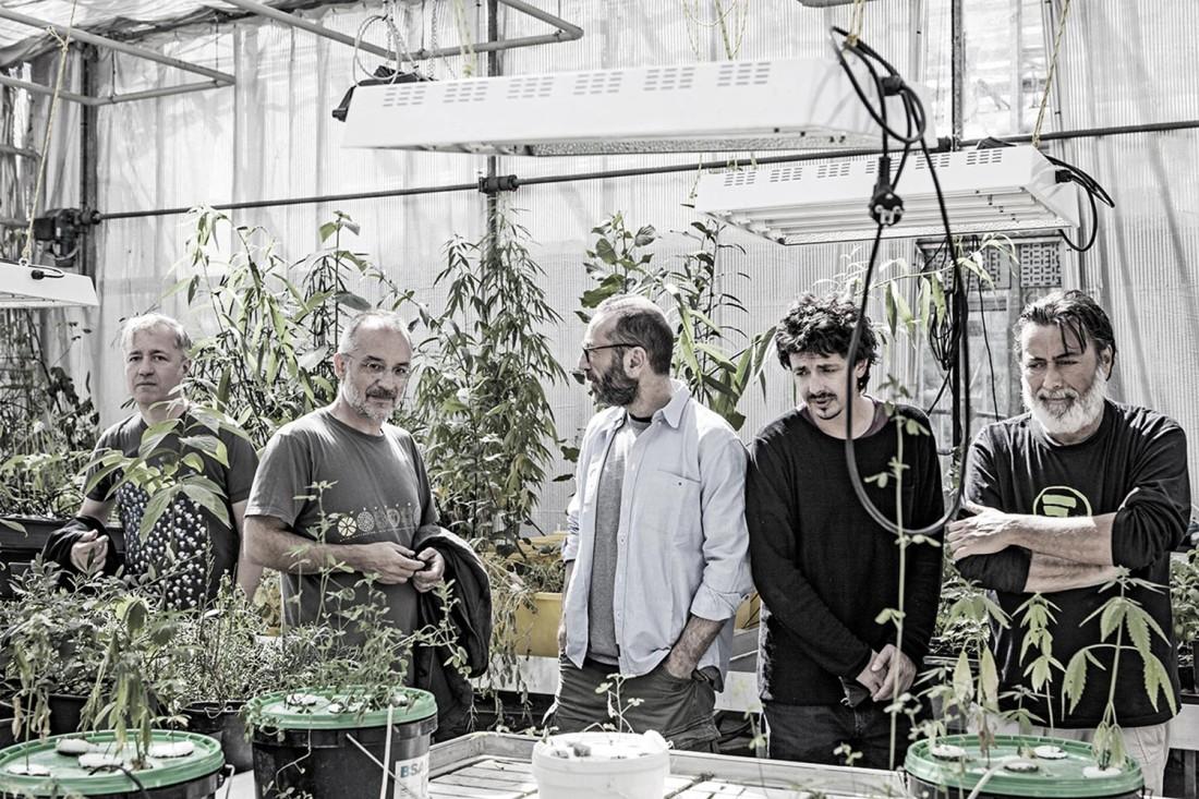 Notte verde_The Deproducers