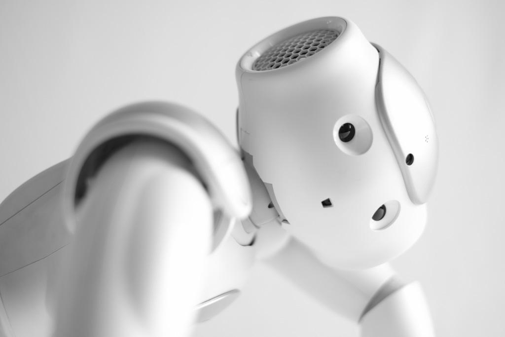 mostra-robot-rovereto-1