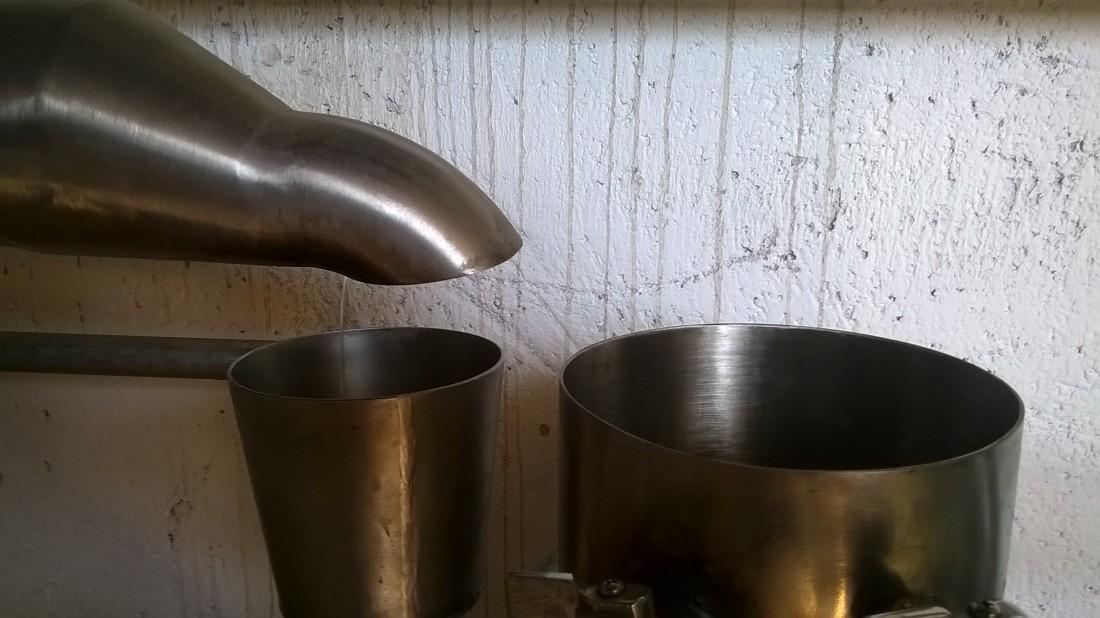 Ecoidea_Distillazione Timo 2_WEB