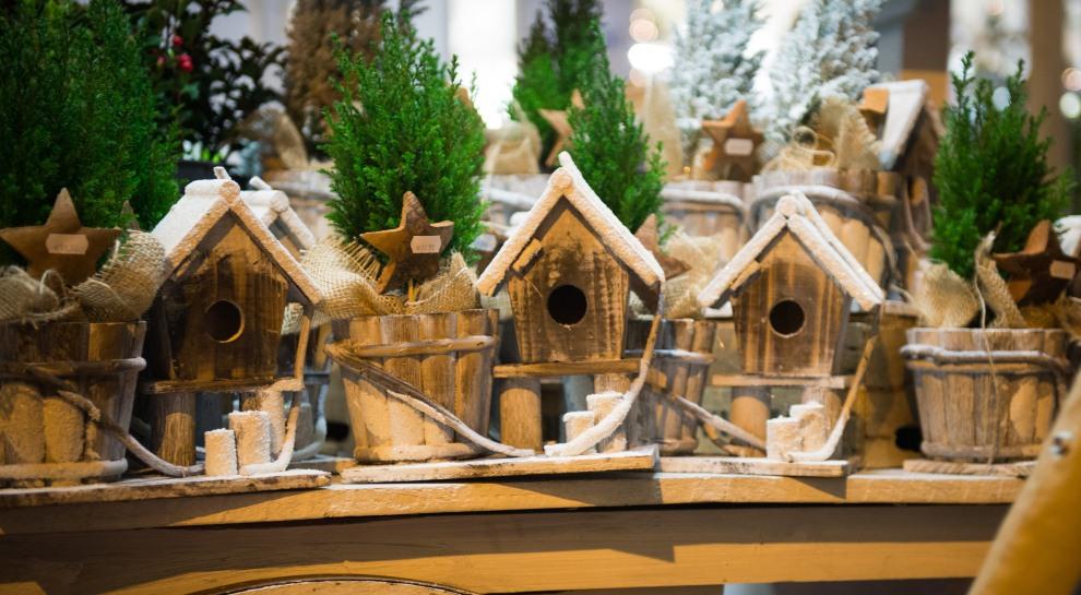 Natale dei Popoli - Lorenzo
