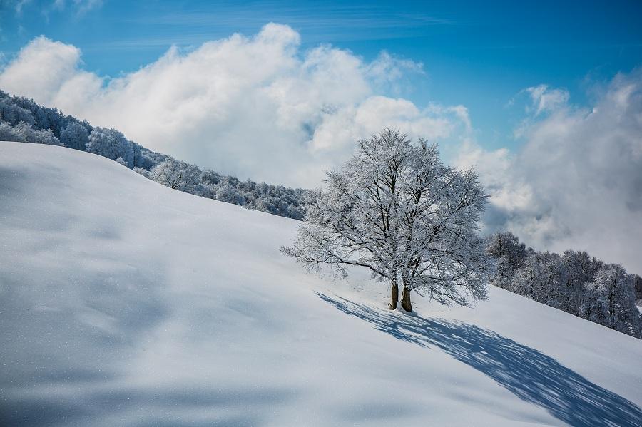 tommaso-prugnola-inverno-brentonico