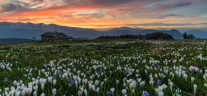 Monti Lessini-Fototeca Trentino Sviluppo S.p.A.-Foto di Francesco Vaona (1)