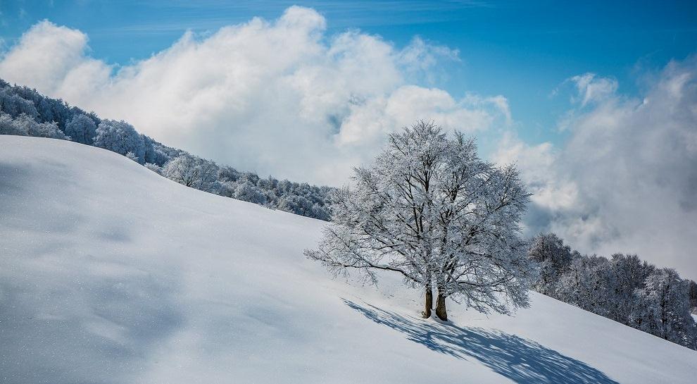 Un paesaggio del Parco Naturale Locale del Monte Baldo in inverno in una foto di Tommaso Prugnola