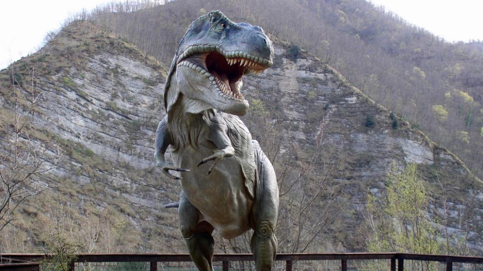 dinosauri in carne ed ossa