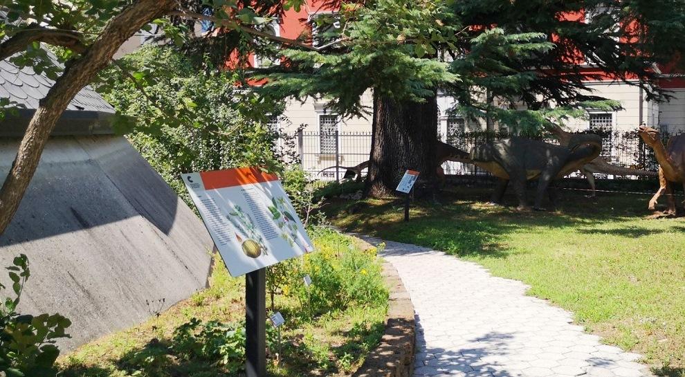estate-al-museo-civico (1)
