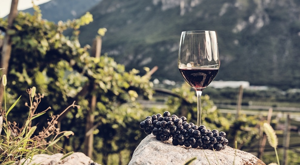 la-cadalora-vino-casetta-foto-il-companatico (2)