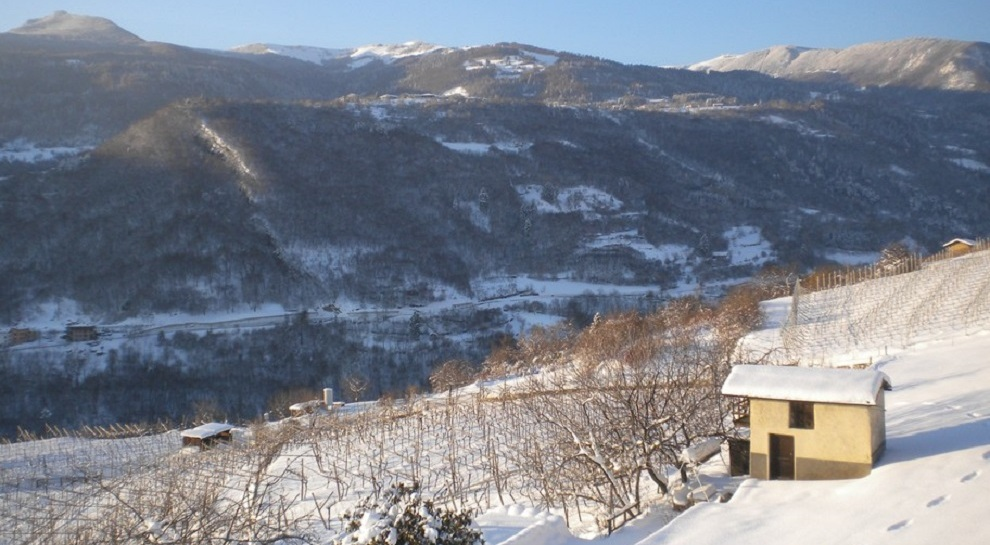 panorama-invernale-delle-campagne-di-cazzano-verso-la-polsa (1)