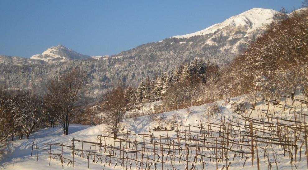 panorama-invernale-delle-campagne-di-cazzano