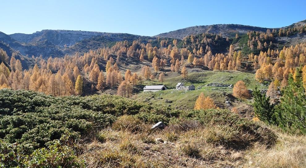 autunno-pasubio (2)