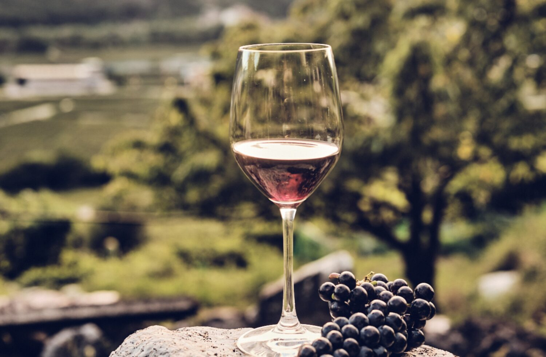 La Cadalora-Vino da uva Casetta-Settembre-enogastronomia-vino-Foto Il Companatico